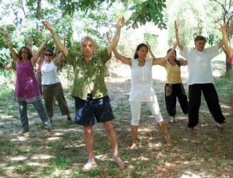 Pratique du Qi Gong en Ardèche
