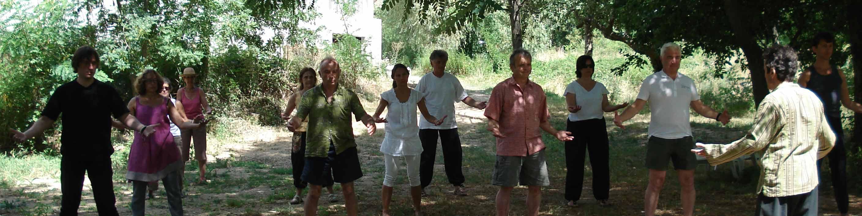 Pratique du Qi Gong - Stage d'été