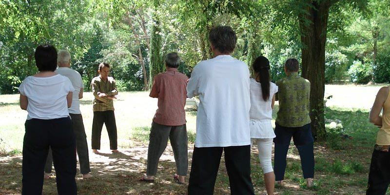 Pratique du Qi Gong en extérieur - Stage d'été